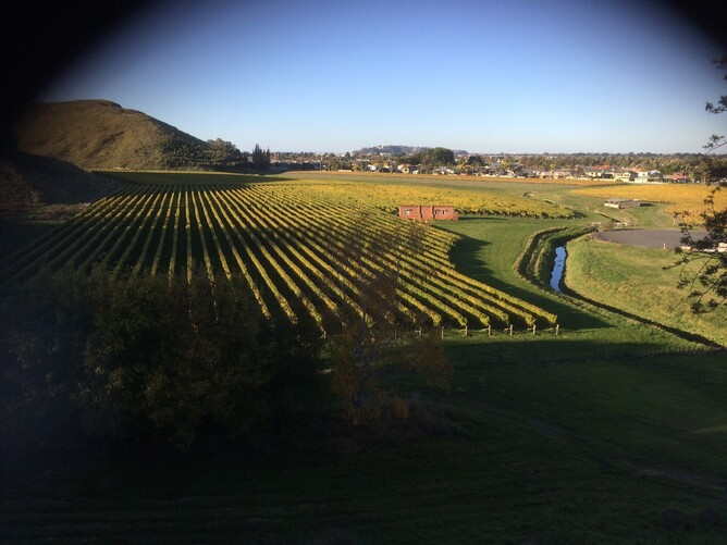 Wineries in the Hawkes Bay