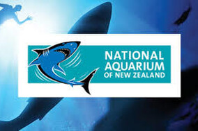 NZ's National Aquarium